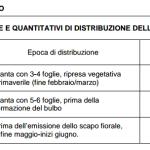 Epoche e quantitativi di distribuzione dell'azoto