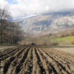 Furrows preparation